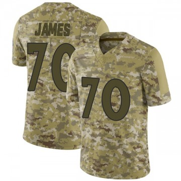 Youth Nike Denver Broncos Ja'Wuan James Camo 2018 Salute to Service Jersey - Limited