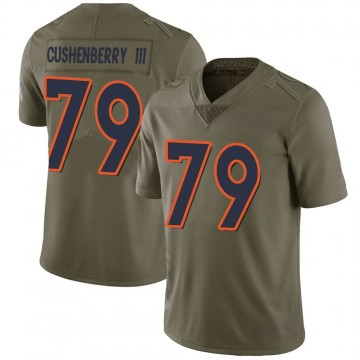 Youth Nike Denver Broncos Lloyd Cushenberry III Green 2017 Salute to Service Jersey - Limited