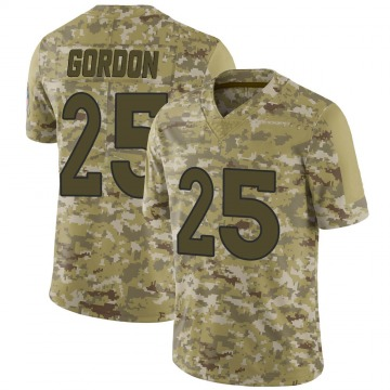 Youth Nike Denver Broncos Melvin Gordon Camo 2018 Salute to Service Jersey - Limited